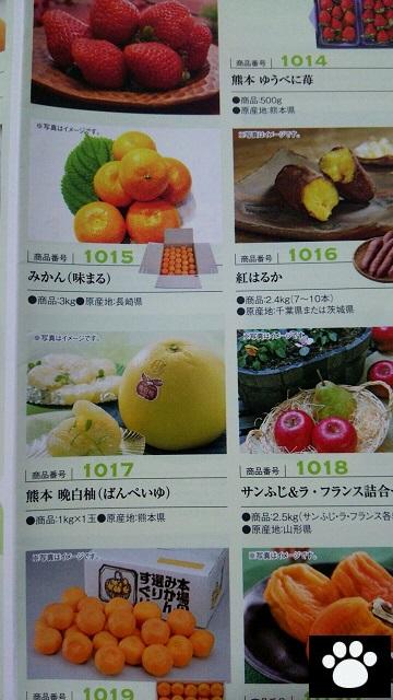 パイオラックス5988株主優待2