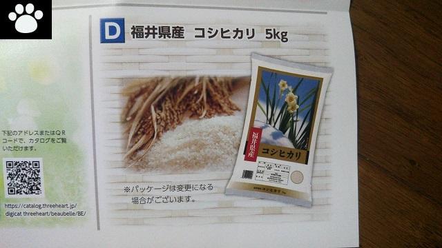 ゲンキー9267株主優待2019030602