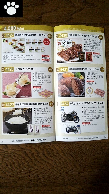 ヤマハ発動機7272株主優待2019061510