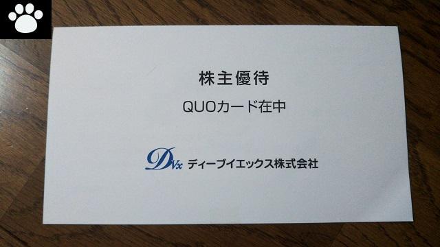 ディーブイエックス3079株主優待2019072701