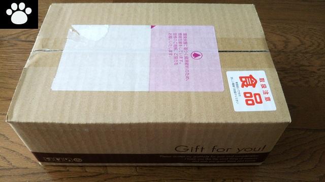 NECキャピタルソリューション8793株主優待2019092902