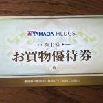 ヤマダホールディングス9831株主優待2021081602